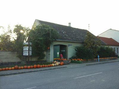 Kürbisse im Alten Dorf