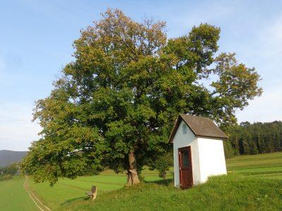 Kapelle bei Waidmannsfeld