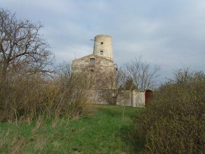 Ruine Markgrafneusiedl