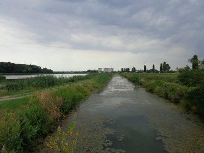 Vogelschutzgebiet Hohenau