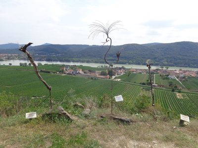 Weinskulpturen