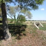 Bunkeranlage im Park Hirschstetten