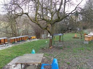 Bienenzucht am Nußberg