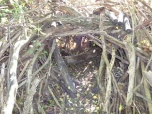 Höhle aus Ästen