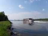 Hohe Wellen auf der Donau