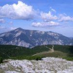 Schneebergblick vom Jakobskogel