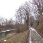 Spazierweg am Marchfeldkanal