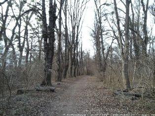 Stadtwanderweg 9