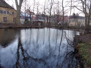 Teich bei Schloss Pötzleinsdorf