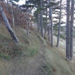 Wanderweg um den Eichkogel