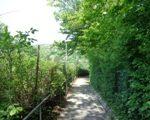 Kahlenbergweg