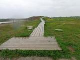 Wall um den Seestadt See