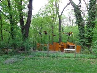 Bienenstation in Schönbrunn