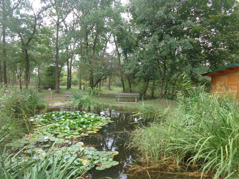 Biotop der Naturfreunde
