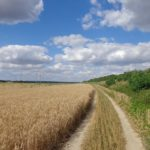 Feld am Rußbach