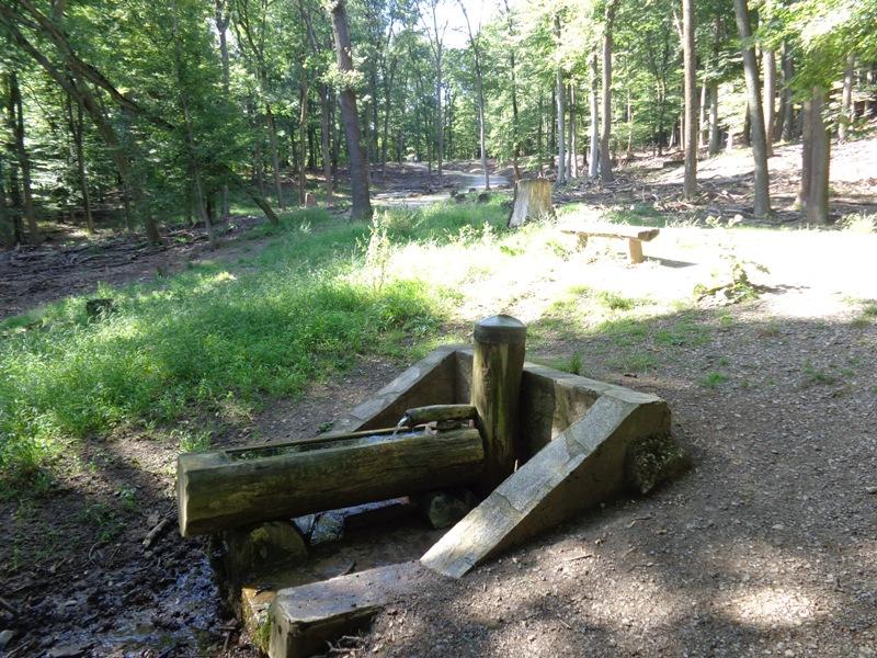Kaltbründl Quelle