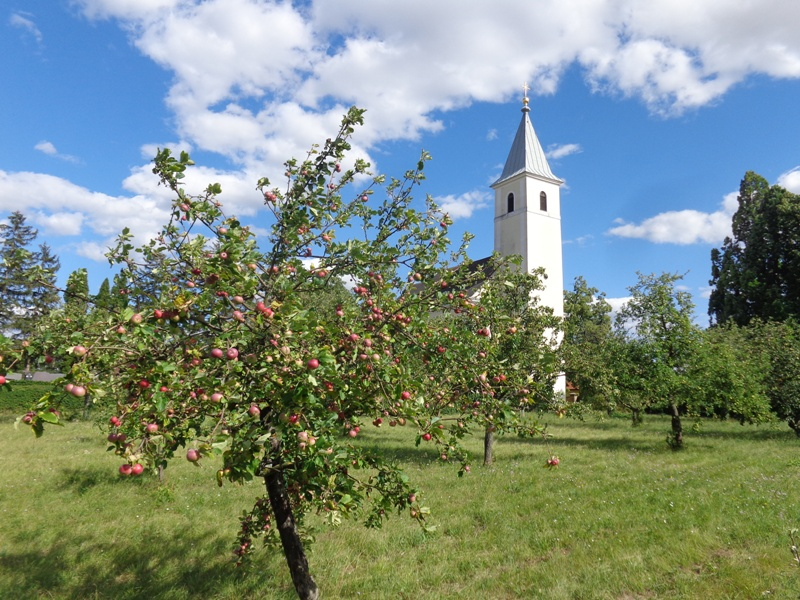Pfarrkirche Sierndorf