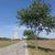 Radweg bei Marchegg