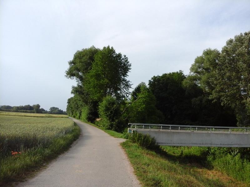 Radweg bei Ulrichskirchen