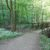 Wanderweg Hagenbachklamm