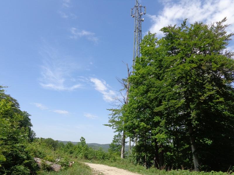 Wanderweg am Kahlenberg