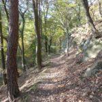 Wanderweg bei Hinterbrühl