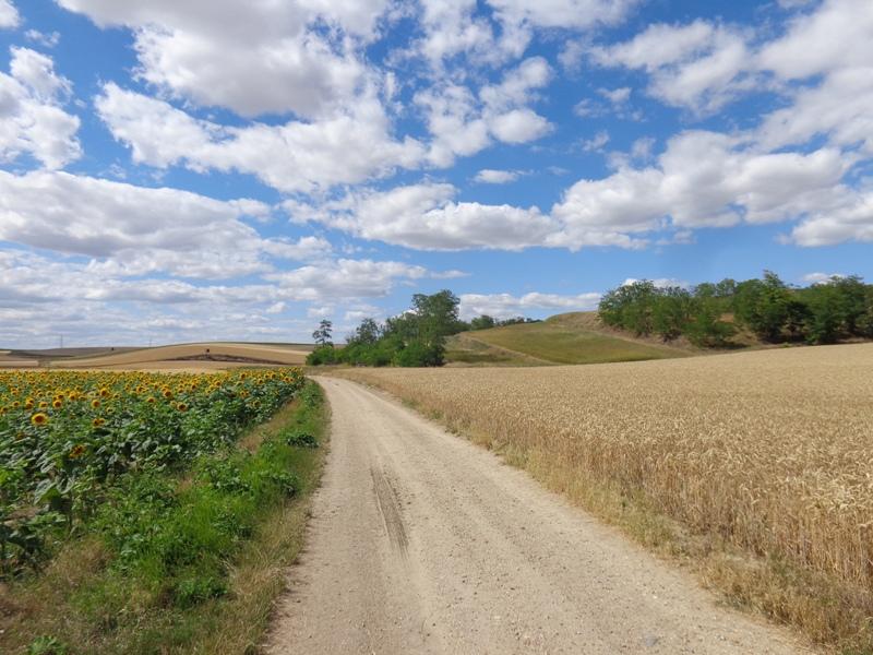 Wanderweg bei Jedenspeigen