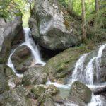 Myra Wasserlauf