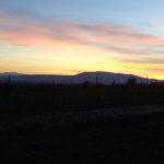 Abend bei Herrenholz