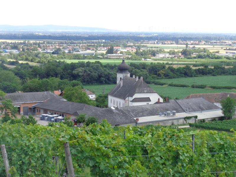 Beim Weingut Thallern