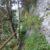 Felsenpfad