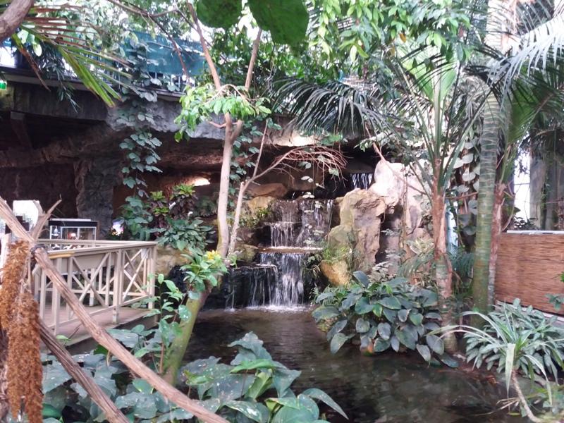 Im Palmenhaus