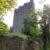 Ruine Rauheneck