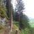 Rundweg zur Ruine Friedburg