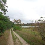 Sanddünen Radweg