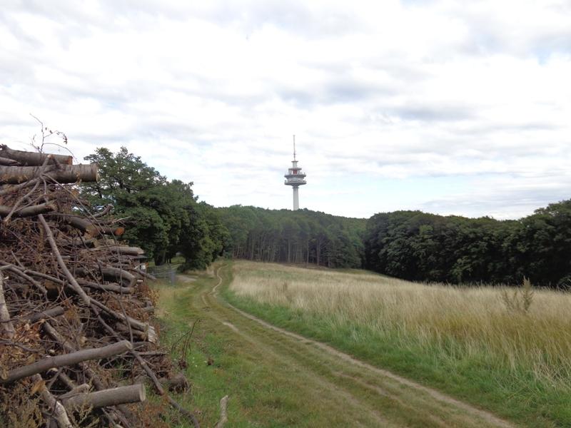 Scheiterplatz am Exelberg