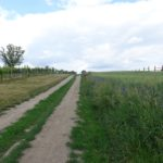 Wanderweg bei Obersdorf