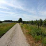 Wanderweg nach Wolkersdorf