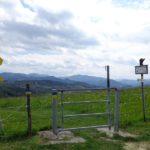 Wandern bei Haberegg