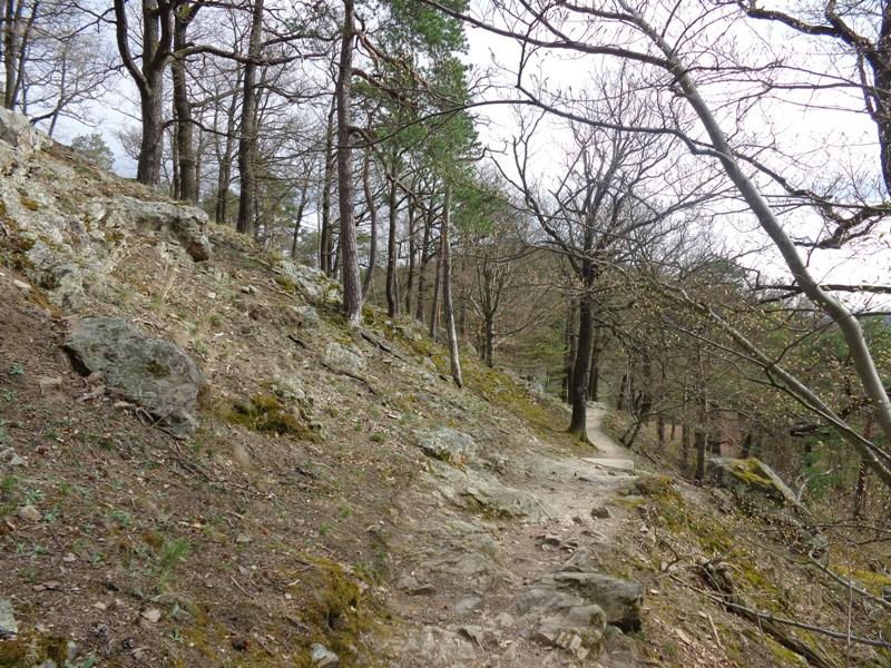 Kreuzung Vogelbergsteig