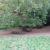 Rastplatz im Dehnepark