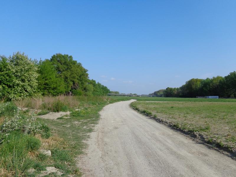 Sandweg an der Donau
