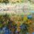 Schwäne auf dem Lusthauswasser
