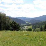 Wanderweg bei Losenheim