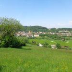 Blick auf Wilhelmsburg