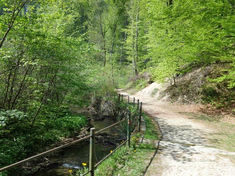 Der Hagenbach