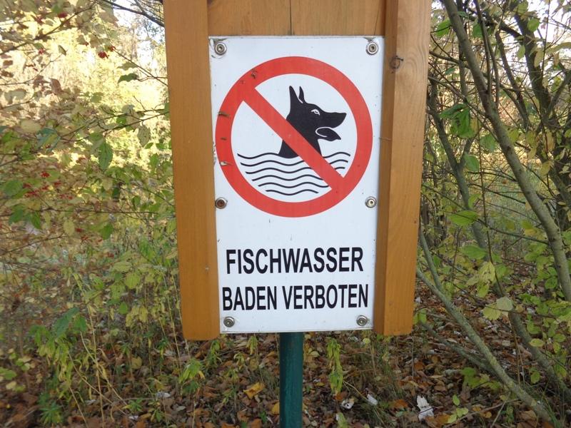 Fischwasser – Baden verboten