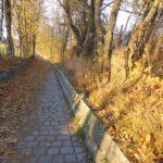 Kallusweg im Herbst