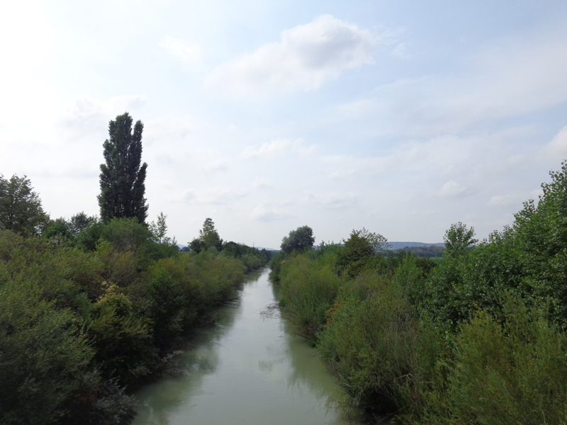 Marchfeldkanal bei Föhrenhain