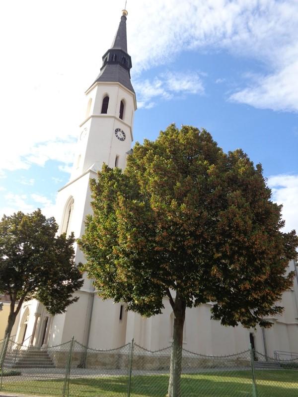 Pfarrkirche Bockfließ